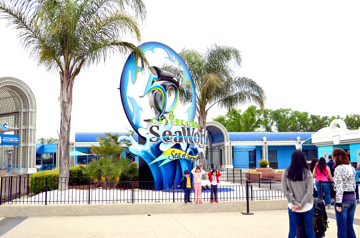 Hotels Near Seaworld San Antonio Tx